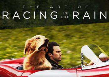 The Art of Racing In The Rain.jpg